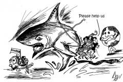Sharklines